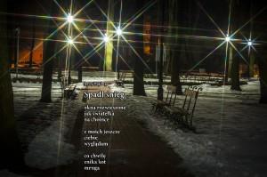 Spadł śnieg, fot. Maciej Kurłowicz